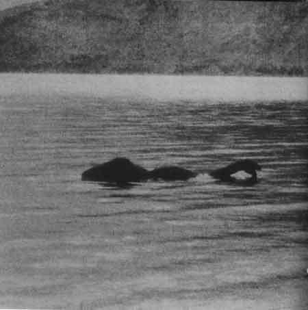Чудовище озера Лох-Несс